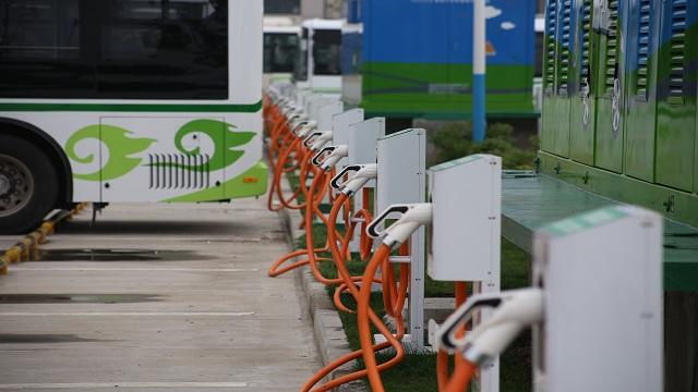"""新能源补贴缩水,车企""""断奶""""后"""