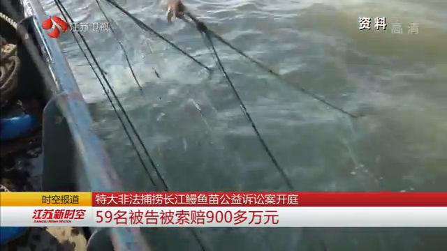 特大非法捕捞长江鳗鱼苗公益诉讼案开庭 59名被告被索赔900多万元