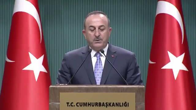 土外长:这不是停火,只是让恐怖组织离开安全区