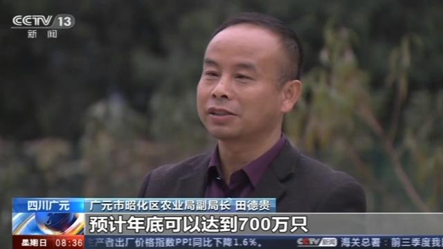 无需申请注册送礼金|青岛港被基金减持258.5万股