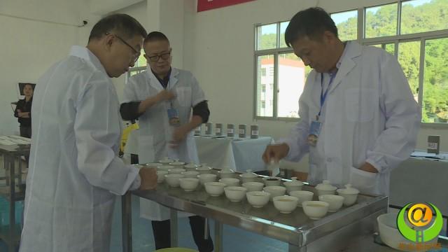华安仙都镇:赛茶王  兴产业