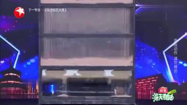 中国达人秀沙箱逃脱险酿事故,金星杨幂直接
