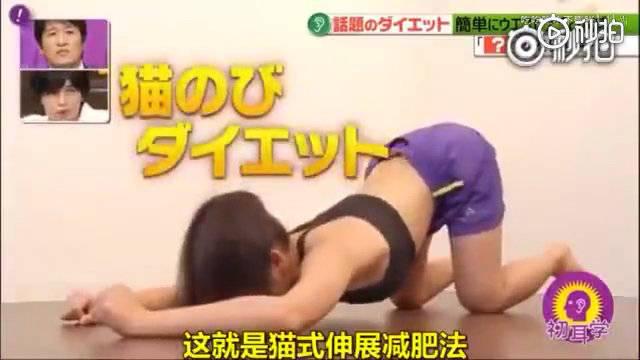 日本神奇的猫式伸展减脂法,只靠一个动作就能瘦腰腹