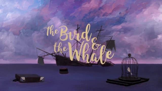 4500幅手稿凝练高分获奖处女作《鸟与鲸》