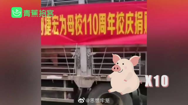 【中学110周年校庆  校友为母校捐赠10头猪】