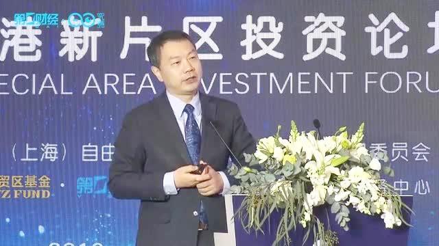 陈杰:临港新片区更具创新活力和国际化发展空间