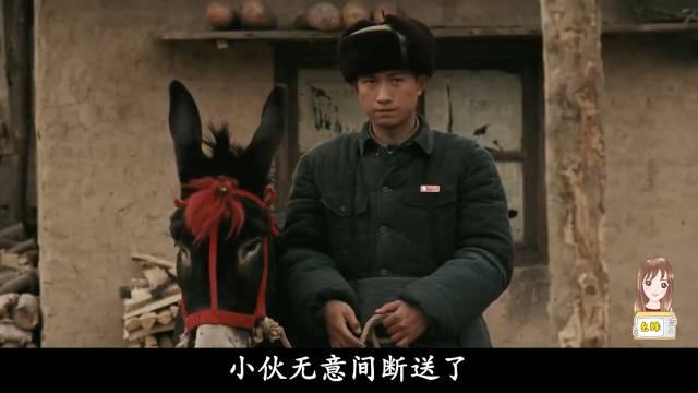 男子杀了头种驴,结果被驴弟弟追着寻仇,一部高分国产喜剧