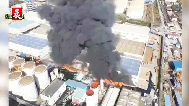 """上海浦东""""嘉里粮油""""突发火灾,首批10辆消防车已抵达扑救"""