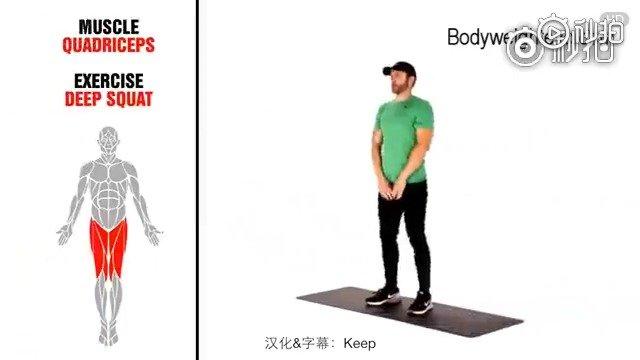 想知道平时做的健身动作,具体锻炼的都是哪块肌肉?[来]花2分钟了