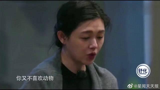 大S问汪小菲为什么这么怕她吃饭