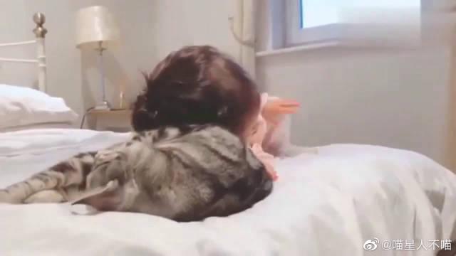 萌宠:女孩和猫咪成了好朋友