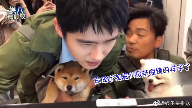 刘昊然抱着柴犬眯眼看电脑屏幕,太像近视眼们没戴眼镜的样子了