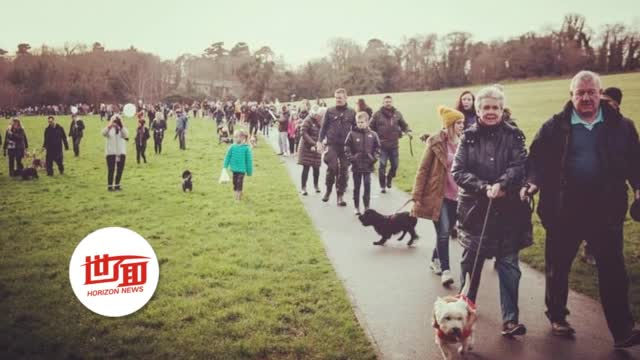主人为患癌爱犬举办告别会 意外吸引数百人携小狗为它加油打气