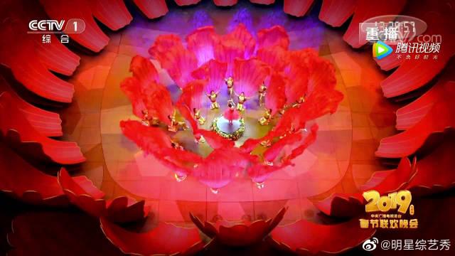 林志玲领衔特别节目《绽放》,水中花样舞蹈简直美翻了