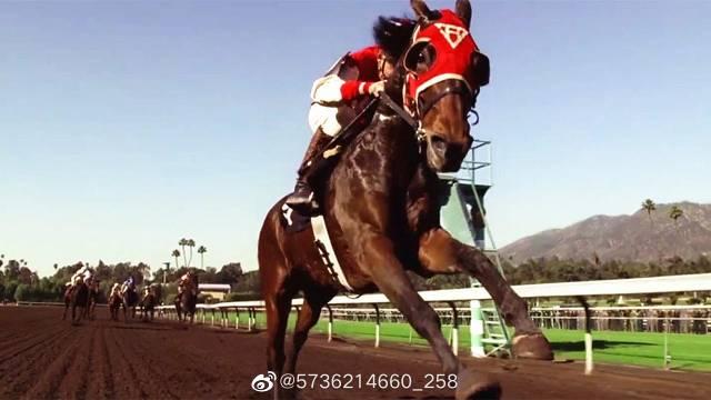 这匹赛马和骑手太拼了,他们分别韧带断裂和骨折