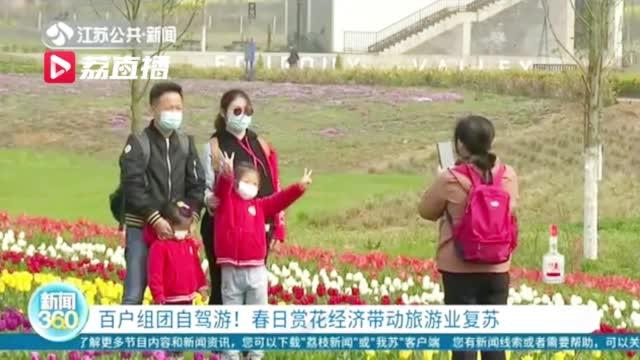 踏青赏花热度高涨,南京百户家庭组团自驾游