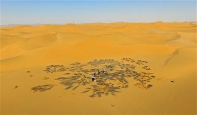 10月29日,腾格里沙漠腹地,中科院专家利用专业仪器采集之前被污染过的沙漠的土样。这个地方此前是化工厂和排污池之间铺设排污管道所经之地,目前管道已被拆除。