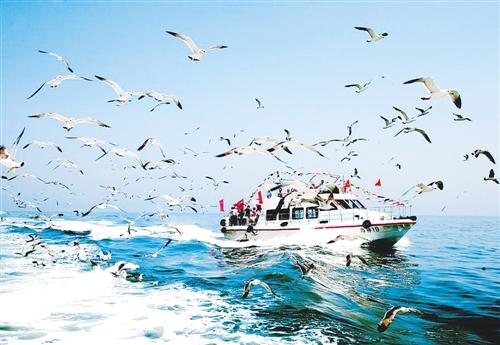"""山东长岛32个岛屿 成""""中国十大最美海岛""""之一"""