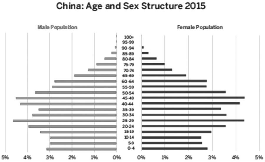 {2016中国人口结构图}.