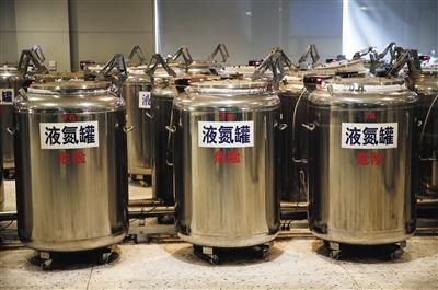 1月27日,北京市脐血库,脐带血存放在-196℃的液氮罐内。