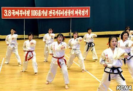 在此次运动会中,朝鲜咸镜北道、平壤市和黄海南道分别获得本届运动会冠军、亚军、季军。