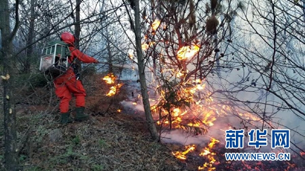 3月20日,森警战士在火场紧张扑救。新华社发(邢智鑫摄)