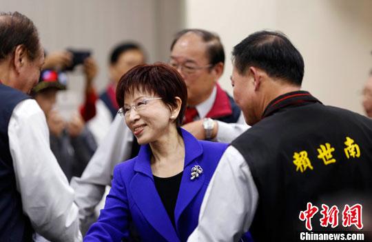 资料图:国民党主席洪秀柱(中)中新社记者 张一凡 摄