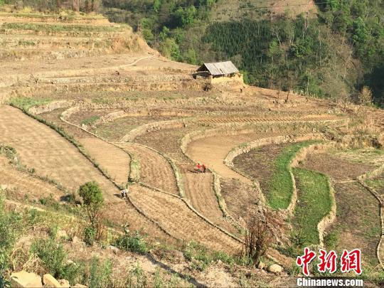 山区里条块状的耕地是孔屯村村民的生活依靠。 杨云 摄