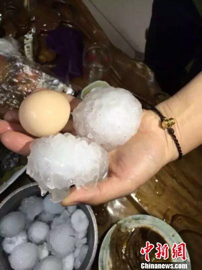 4月9日晚,广西融安、融水2县部分地区出现冰雹灾害,最大冰雹如鸡蛋一样大。 钟欣 摄