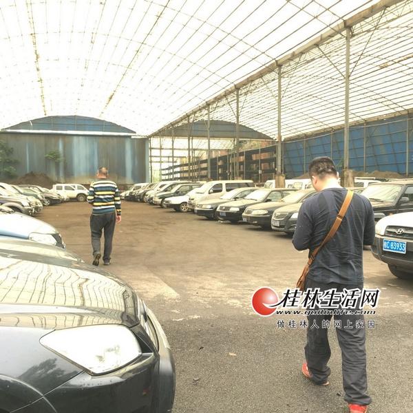 图为兴安县集中封存停放的公车