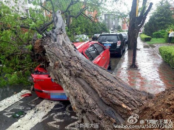 狂风骤雨袭辽宁雨量破纪录风力堪比台风 明起