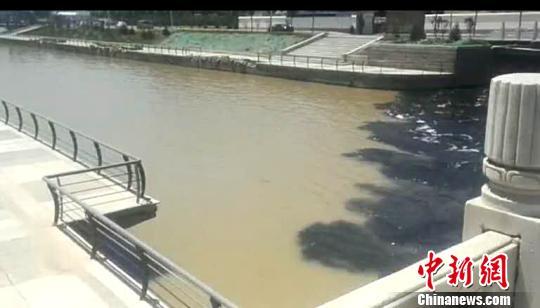 污水从桥下弥漫出来。(视频截图) 视频截图 摄