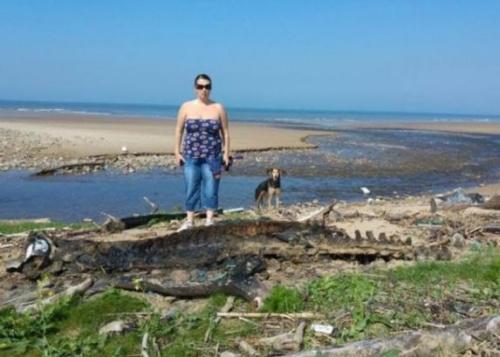 里斯表示,该岸滩平时仅有水母等细小海洋生物被冲上岸,这次的尸体大得令人难以置信。