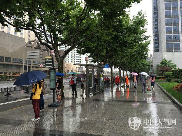 上海今有大到暴雨 1小时雨强可达30毫米