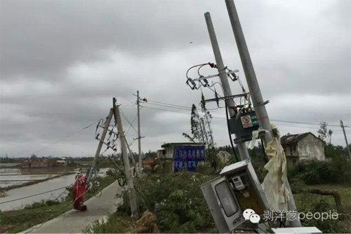 阜宁县榆东村是龙卷风经过的重灾区,仅榆东村二组就有8人遇难,整个村子房屋成片倒塌,大树拦腰折断,变电箱严重损毁。图片来自网络