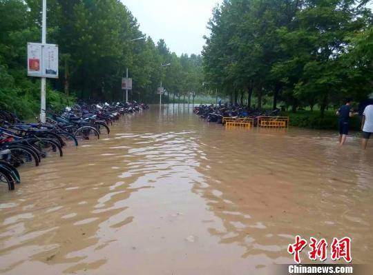 图为河南师范大学校园内路段积水严重。 周小云 摄