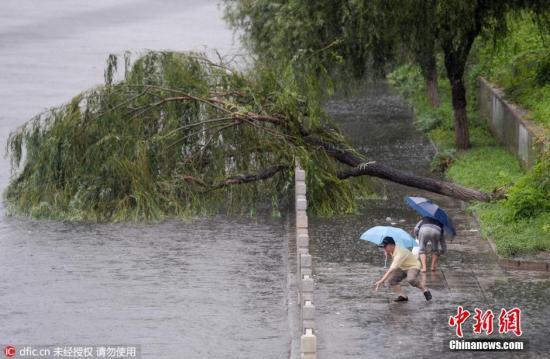 """暴雨后中国城市频繁""""看海"""" 城市病如何治?"""