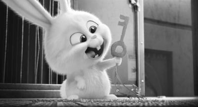 这个是真疯狂动物城!兔子反差萌太可爱了.