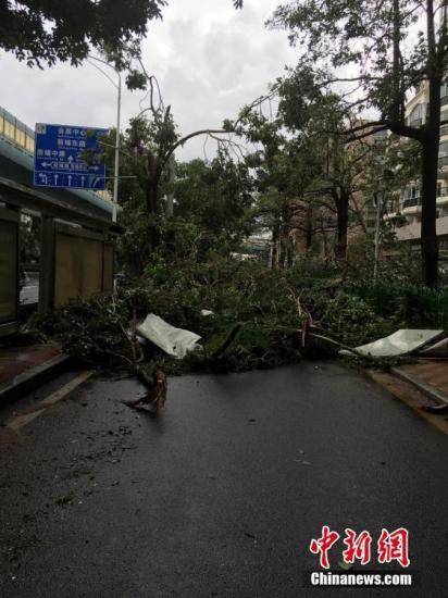 台风莫兰蒂重创福建电网 致165万户用户停电