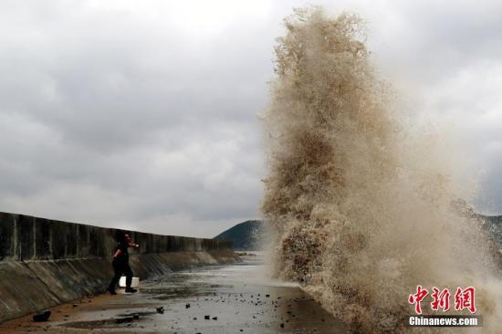 """台风""""马勒卡""""""""联手""""天文大潮 上海黄浦江潮位全线超警"""