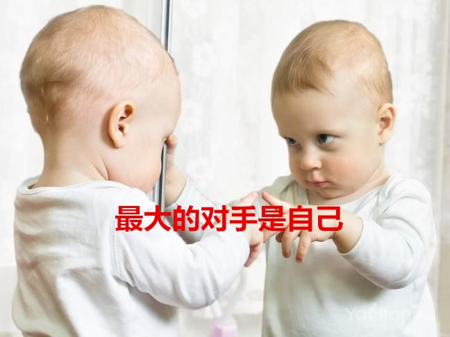 威廉希尔中文网站 2