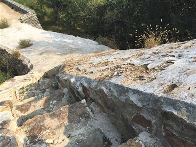 查询组教授称,修停工程选用三七灰土做外壳,这层外壳均匀12公分,将会风化消逝。新京报记者 刘子珩 摄