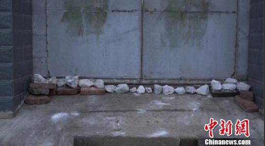 南京眼镜蛇幼蛇逃逸曝光40小时,当地居民家家户户石灰封门窗。 李珂 摄