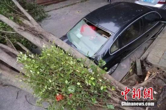 台风海马致闽粤180余万人受灾 直接经济损失42亿元
