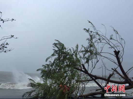 台风海马广东汕尾登陆 中心最大风力14级