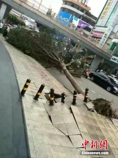 台风海马致苏闽粤190万人受灾 直接经济损失47亿元