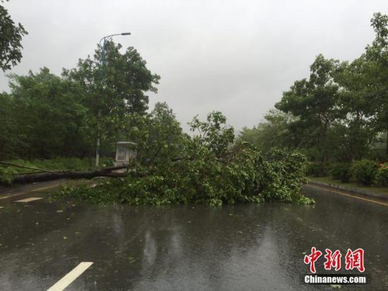 """台风""""海马""""""""吹""""走广东近46亿元 受灾人数升至200万"""