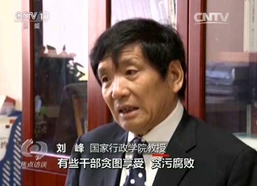 刘峰 caifang
