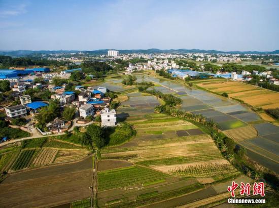 农业部部长:现在仅少部分农民有意愿退出承包地