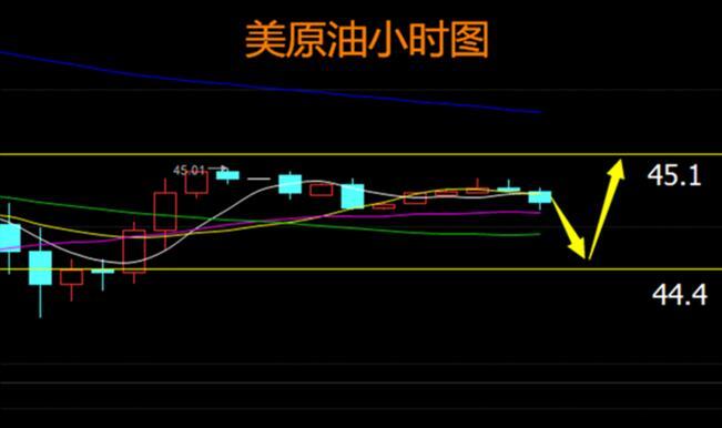 威廉希尔官网中文平台 5